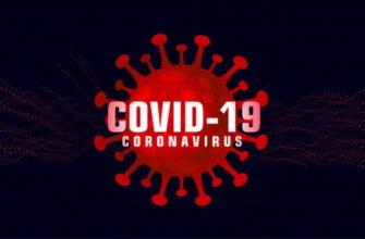Коронавирус в Орловской области 6 августа 2020 по районам и городам
